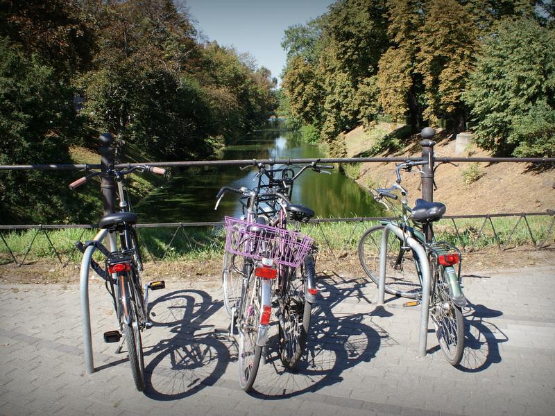 Stojaki rowerowe przy fosie