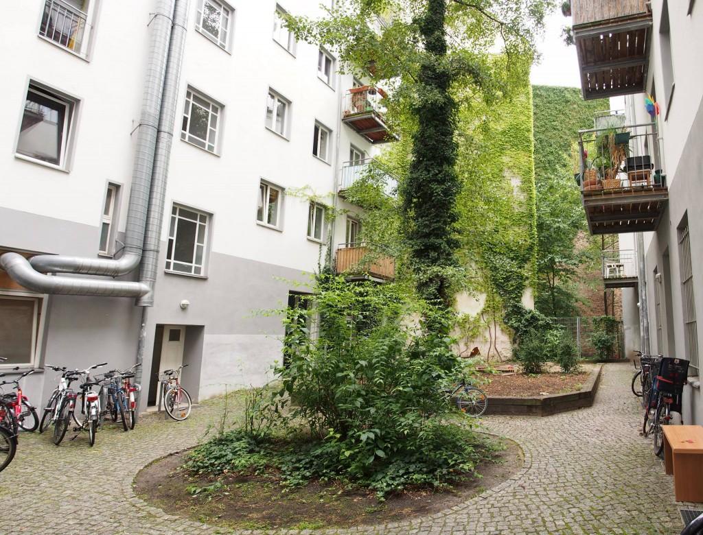 W Berlinie zieleń można spotkać nawet w nieoczywistych punktach miasta.
