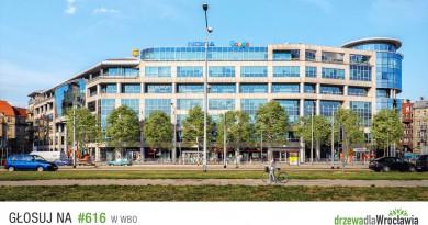 WBO 2018: Drzewa dla Wrocławia – zielone centrum i śródmieście #616